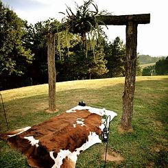 Cow hide rug.jpg