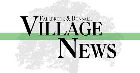 Logo - Village News.png