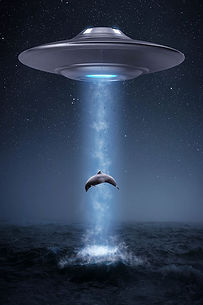 ufo-alien-dolphin-montage-composing-shop.jpeg