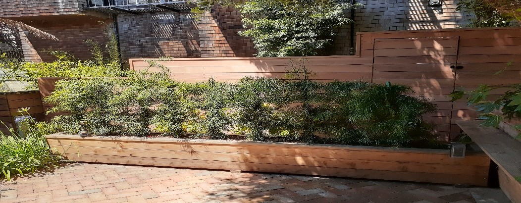 Garden Bed & Fencing