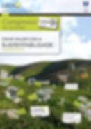 cartaz1_LiderA2010_1.jpg