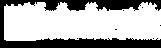 boiani_sport_logo_wht_edited.png