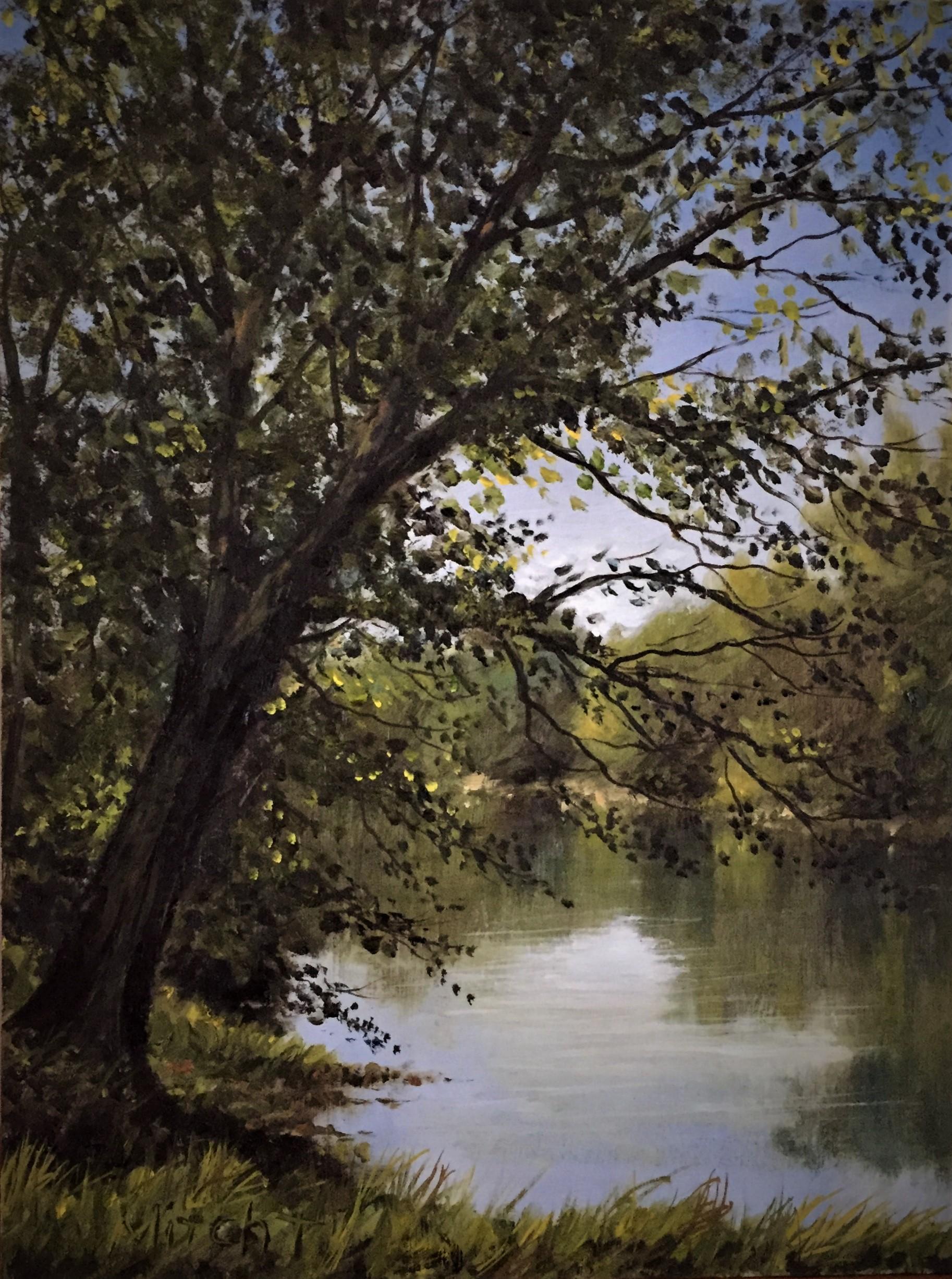 Drakes Creek