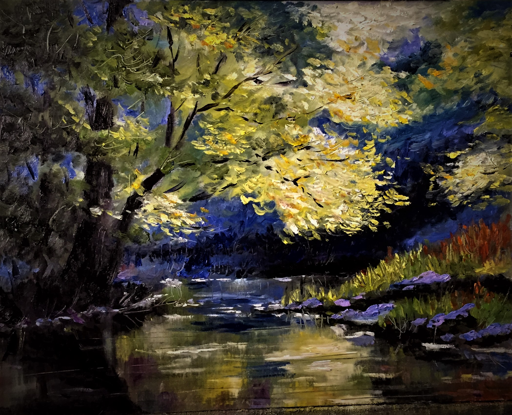 Lighted Creek
