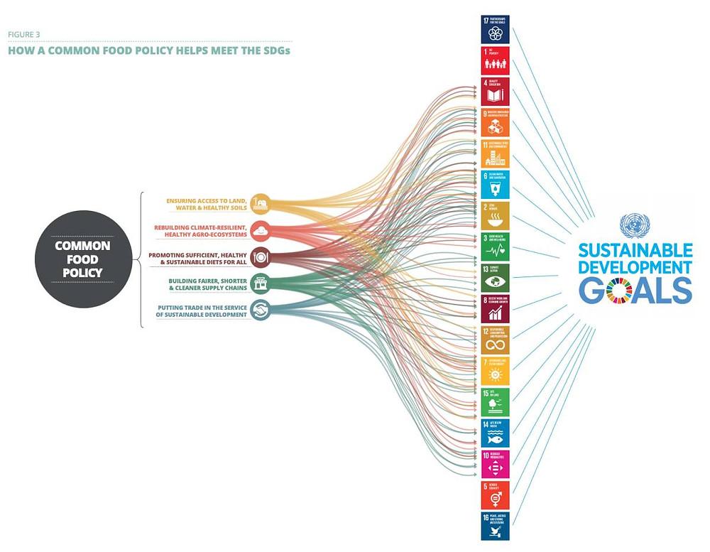 Contribución de la Política Alimentaria Común a los Objetivos de Desarrollo Sostenible.