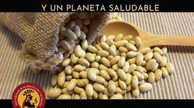 LEGUMINOSAS: ALIADAS DE UNA DIETA Y UN PLANETA SALUDABLE