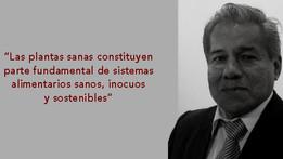 Año Internacional de la Sanidad Vegetal 2020. Entrevista a Ing., M.Sc., Fitopatólogo, Alberto Jiméne