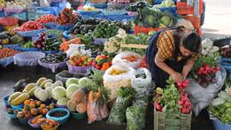 Decenio de las Naciones Unidas de la Agricultura Familiar (2019-2028)