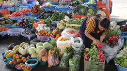 Un informe de la OMS asegura que invertir en nutrición puede salvar 3,7 millones de vidas en el año