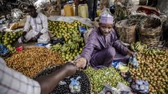 El derecho a una alimentación adecuada y sin desperdicios