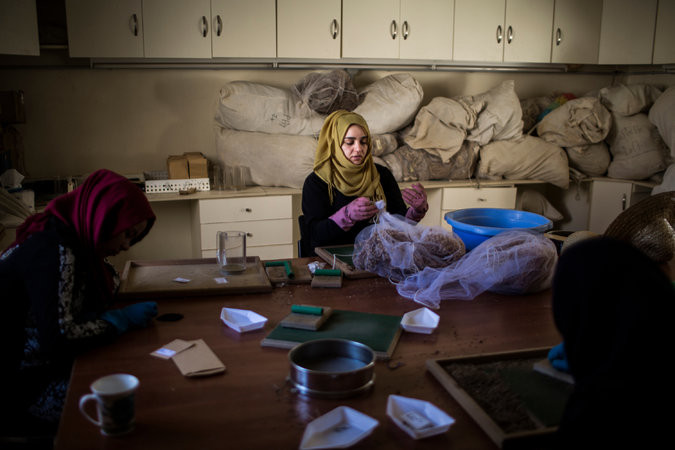 Unos trabajadores libaneses en el banco de semillas en Terbol. Icarda, la organización de Shehadeh, trasladó sus operaciones fuera de Siria tras el estallido de la guerra. Credit Diego Ibarra Sánchez para The New York Times