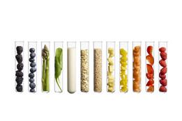 Los cinco nutrientes que necesitamos para vivir, en qué alimentos están y cómo funcionan