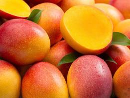 El mango, propiedades y beneficios para tu salud