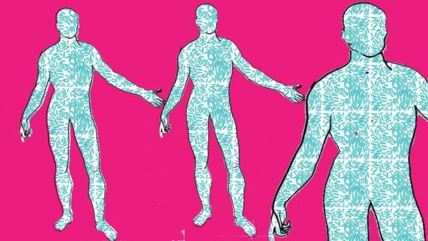Nuestro cuerpo es el hogar de millones de bacterias.