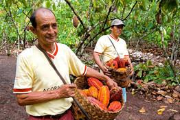 El Salón del Cacao y Chocolate celebra su décima edición con EE.UU. como país invitado