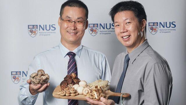 Los doctores Lei Feng (izqda.) e Irwin Cheah (drcha.) practicando con el ejemplo. National University of Singapore.