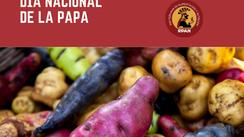 DÍA NACIONAL DE LA PAPA: URGE INCLUIR AL SECTOR PAPERO EN SISTEMA ALIMENTARIO SALUDABLE Y SOSTENIBLE