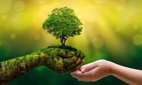 Día Mundial del Medio Ambiente 2020