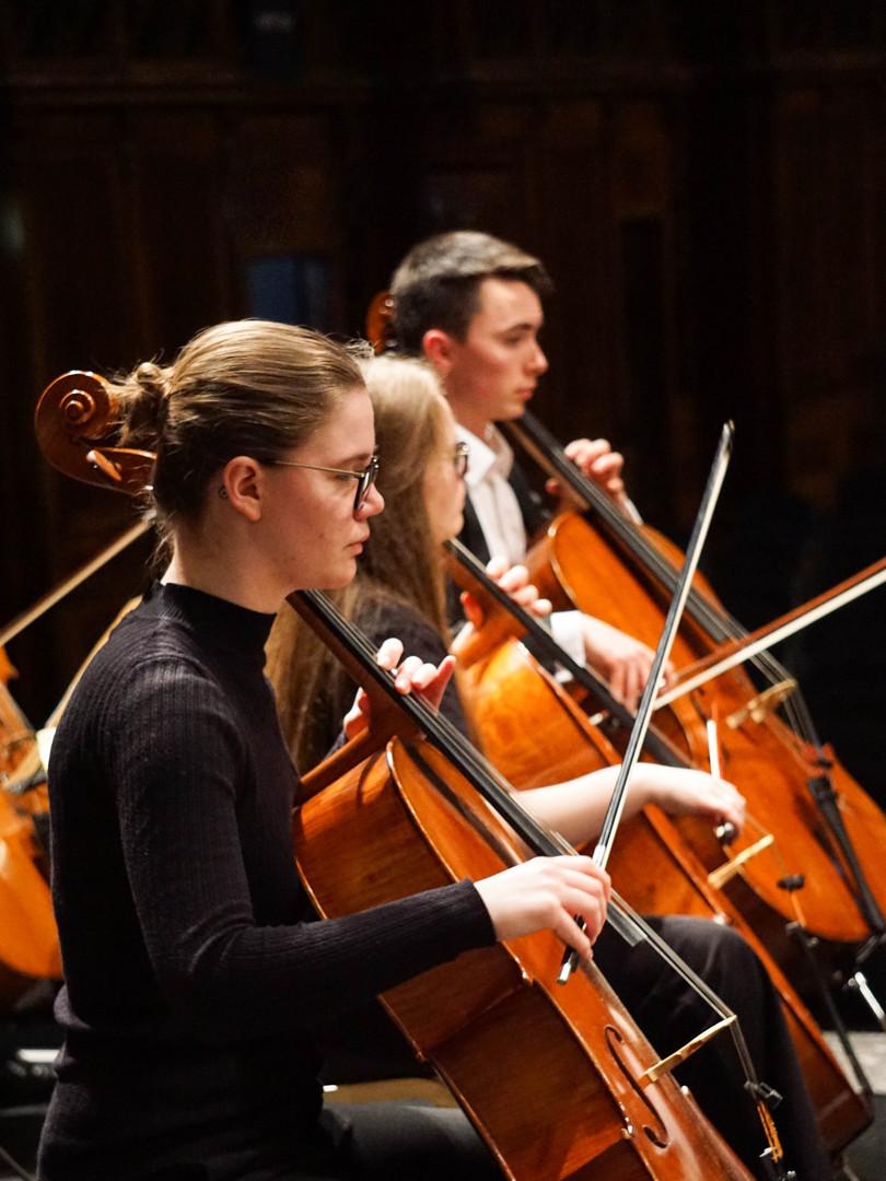 Cellos in Orchestra