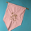 Thumbnail: Castle Fireworks - Pin Display Flag