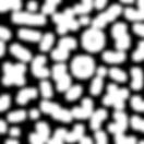 Handwriting Pattern White