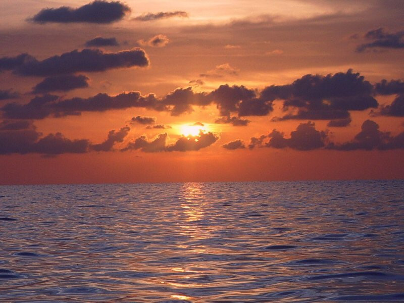 Askespredning på havet