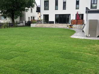 Rasen 2.jpg