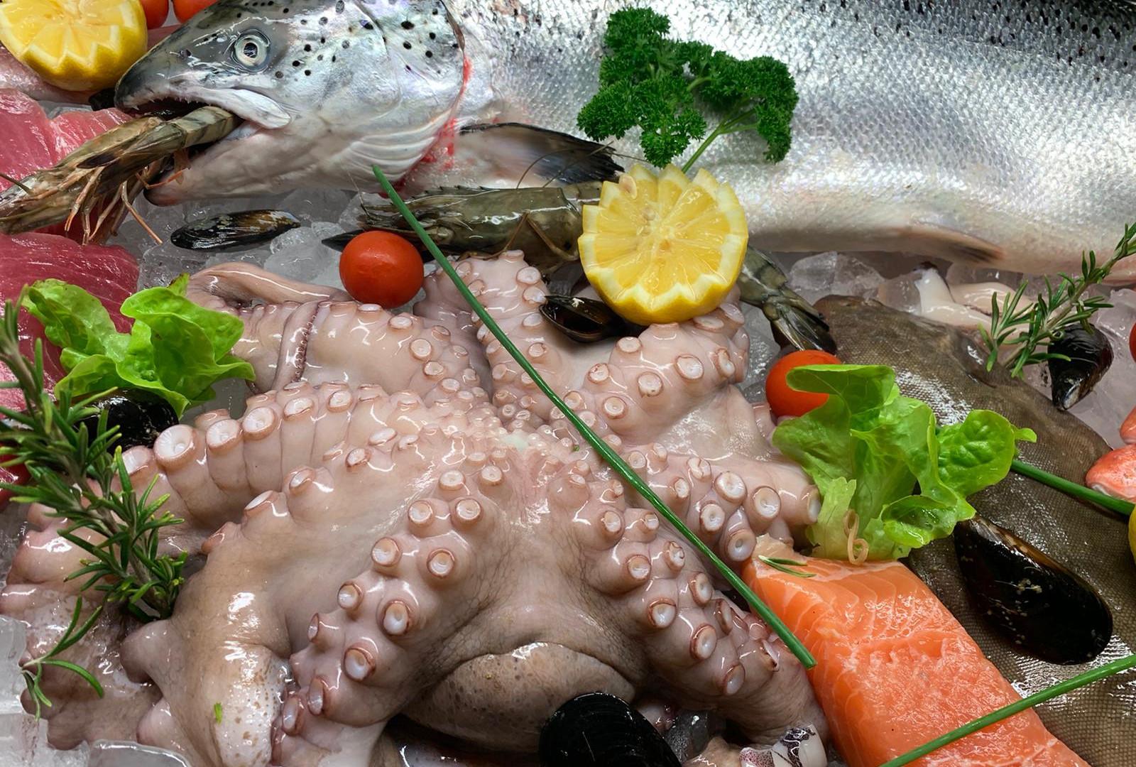 Fisch und Oktopus.JPG