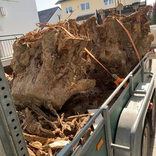 Baum Transport.jpg