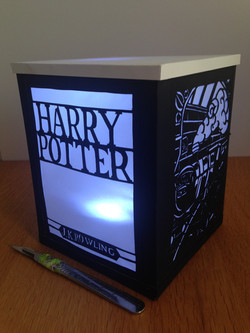 Harry Potter shadow lantern