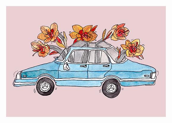 BLOOMING CAR