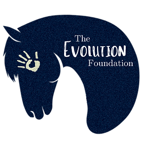 Evolution Foundation Logo.png