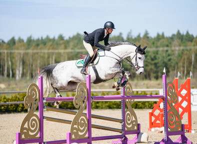 Sacrosanct 3rd placed in 1.35 m