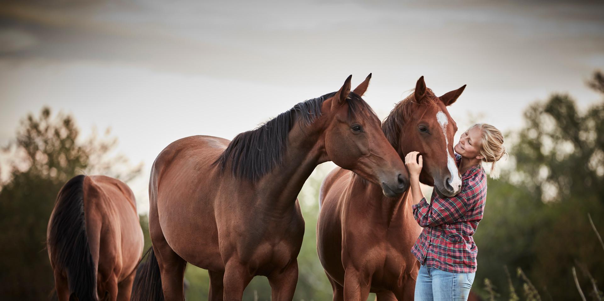 20200822_RAPIDSROCK_Horses__P3A4310.jpg