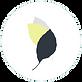 leaf logo no background website.png