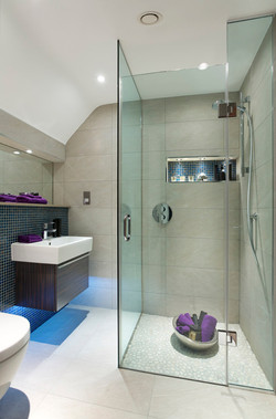 Shower & Tub Enclosure