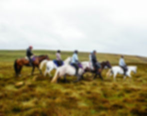 Horse trekking in the highlands