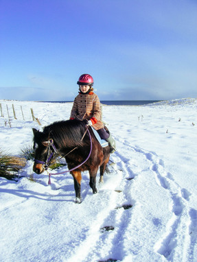 Pony rides in the snow