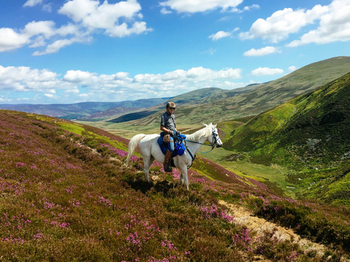 Saffy in the Cairngorms