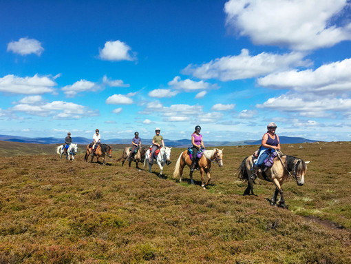Riding to Mount Keen