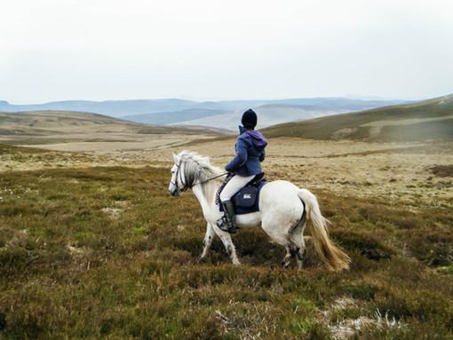 Riding through the heather