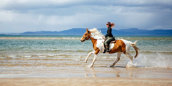 Galloping on horseback on the beach in the highlands