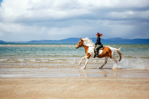 Dominique and Ginny cantering through the sea