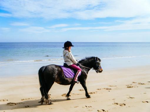 Pony rides on the beach