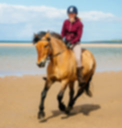 Riding horses on the beach in Ross shire