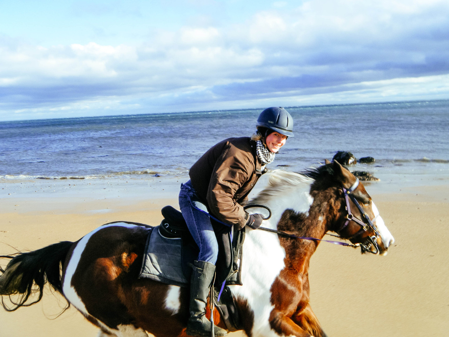 Annie cantering on the beach