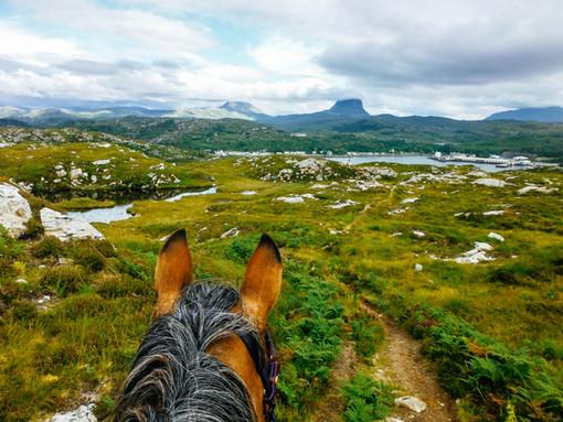 Horse trekking in Lochinver