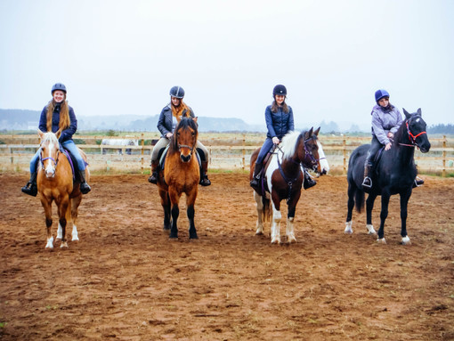 Riding lessons in the school