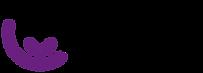 logo myray.png