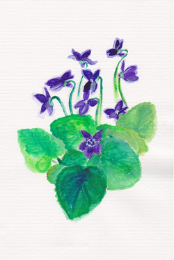 Image: Watercolor painting from the book, violets and leaves
